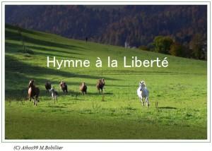 hymne_a_la_liberte